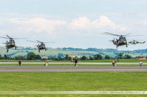Les commandos débarquent des SeaKings, sous la surveillance des Lynx...