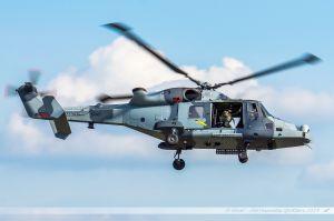 Les Lynx et Wildcat restent surveiller la zone...