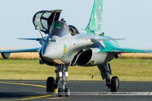 "Dassault Rafale C (113-IX / 119) Armée de l'Air Française ""Tiger Meet 2015"""