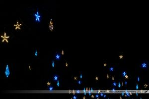 Illuminations 2015 : Décors lumineux dans les arbres de la place du 11 Novembre