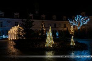 Illumination 2015 : Place de la Tremoille, dans la cour du Château Neuf