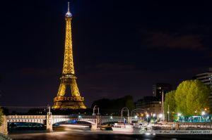 La Tour Eiffel et le pont Rouelle du RER C depuis l'île aux Cygnes