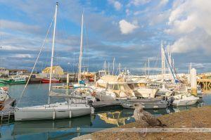 Extension de Port Olonna sur le port de pêche