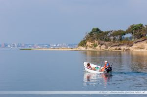Le long de Furzey Island, en direction de Poole Quay
