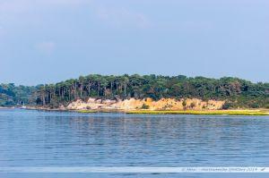 Rive nord de Brownsea Island