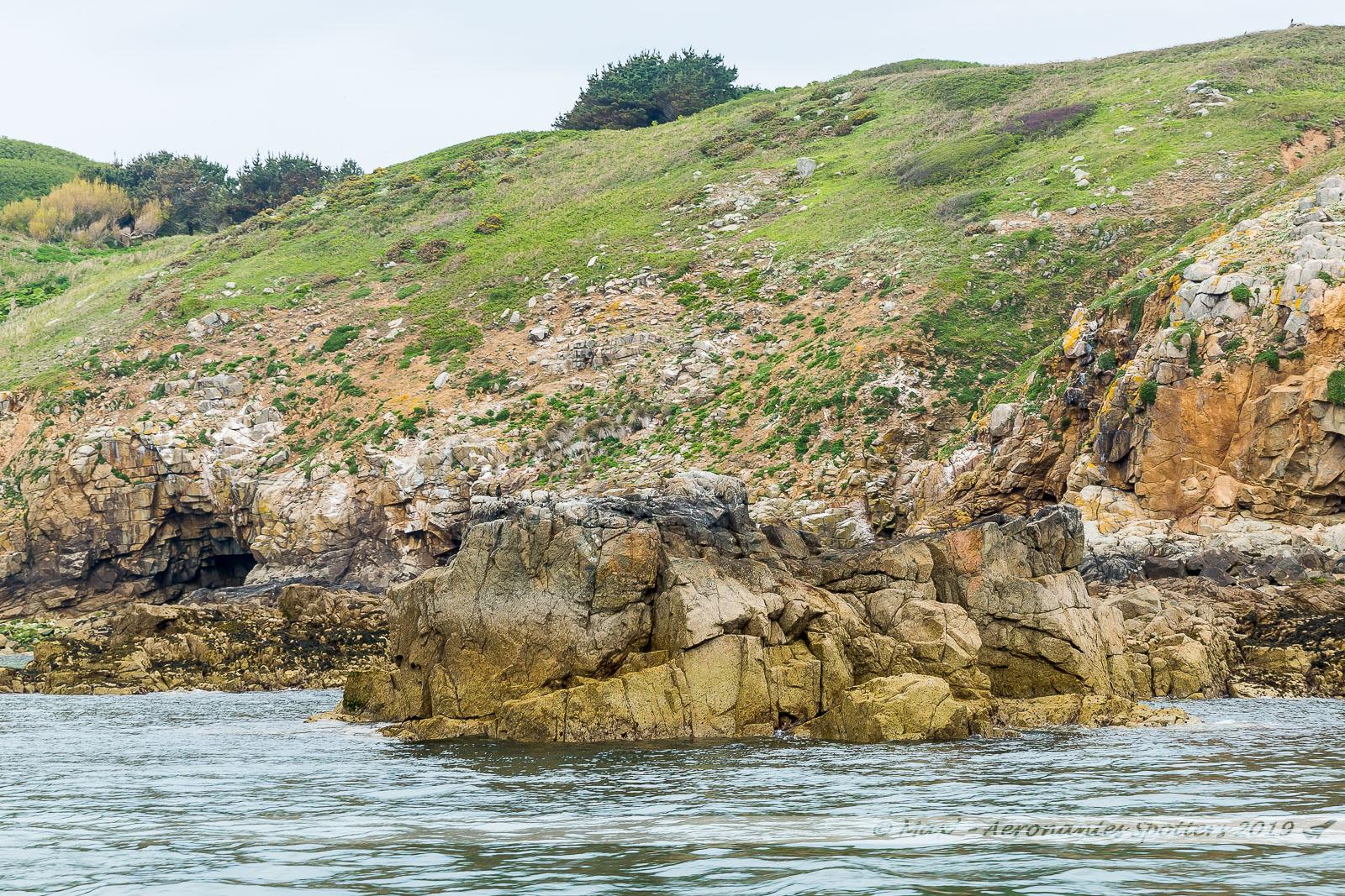 Herm Island - Une nature préservée