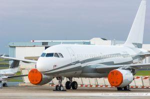 Airbus A318CJ (LX-GJC) GlobalJet Luxembourg