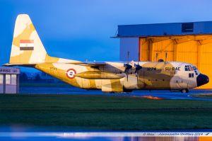 Lockheed C-130H Hercules (L-382 / SU-BAE) Egypt Air Force