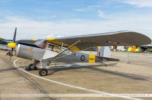 Taylorcraft J Auster Mk5 (G-ALBJ/TW501) Private