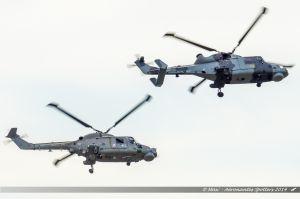 Westland WG-13 Lynx (ZF562/452) %26 Agusta Westland AW-159 Wildcat (ZZ380) Royal Navy