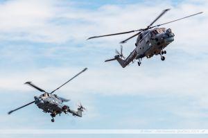 Westland WG-13 Lynx (XZ736/643) %26 Westland WG-13 Lynx (ZD262/315) Royal Navy
