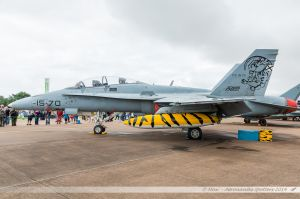 """McDonnell Douglas EF-18A+ Hornet (C15-70) Spanish Air Force """"NATO Tiger special c/s"""""""