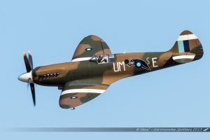 Supermarine Spitfire PR Mk XIX (PS890/UM-E/F-AZJS) Private