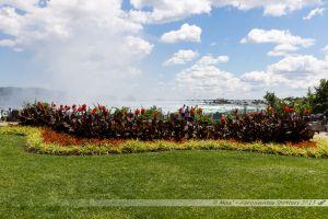Le parc entournant les chutes à Niagara Falls
