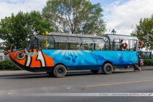 """""""The Amphi-Bus tour"""", un moyen original pour faire le tour de la ville !"""