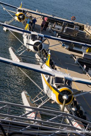 De Havilland Canada DHC-2 Mk.I Beaver (C-FAXI) Harbour Air