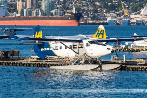 De Havilland Canada DHC-3T Vazar Turbine Otter (C-FHAJ) Harbour Air