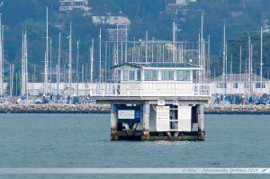 Poole Harbour Hut
