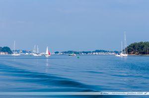 Plaisanciers mouillant entre les îles Green Island et Furzey Island du port de Poole